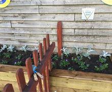 Capture Plants Nursery (1)