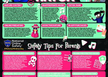 Tiktok online safety